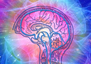 Brain waves - How meditation affects the brain